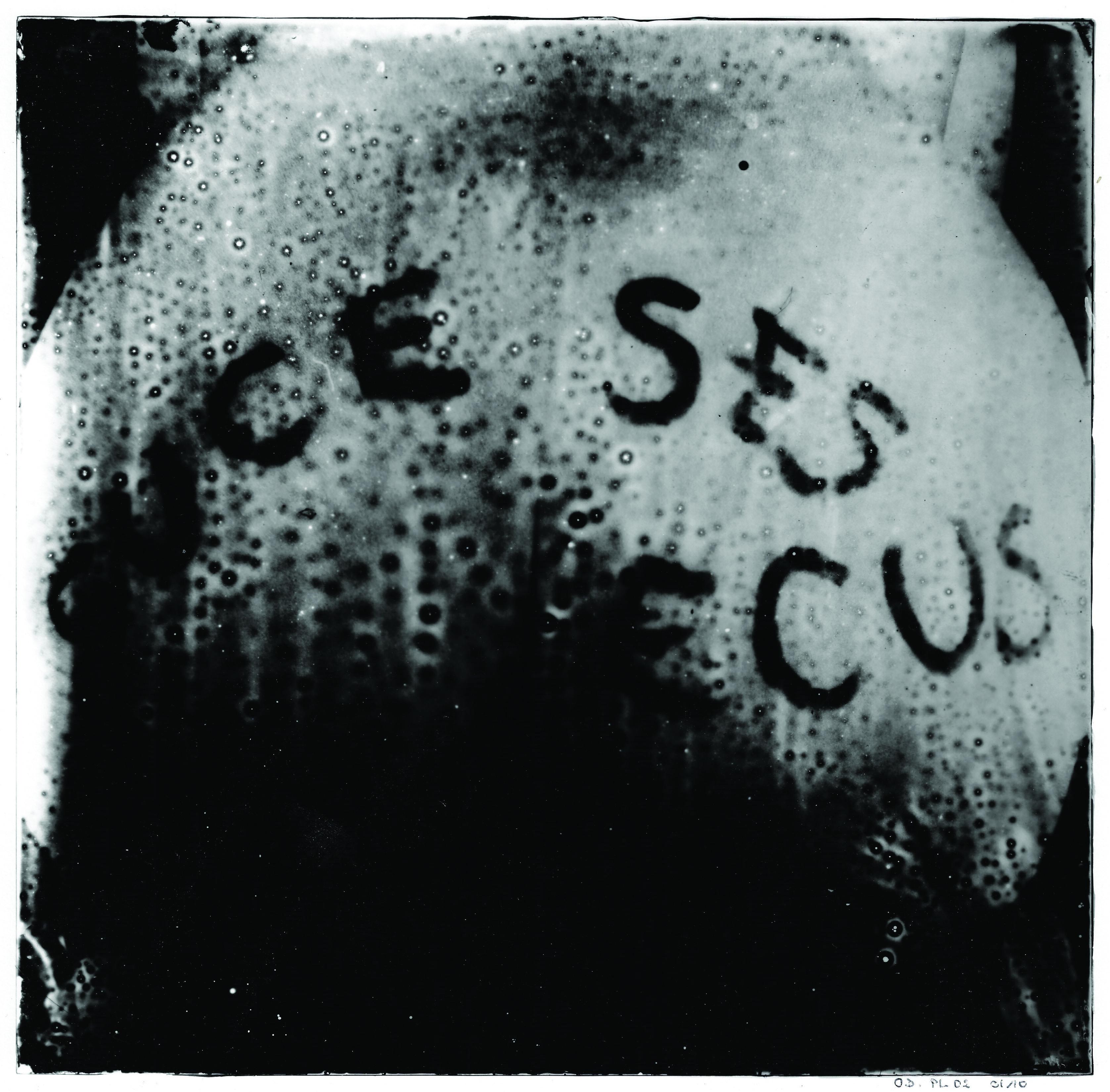 15Suce